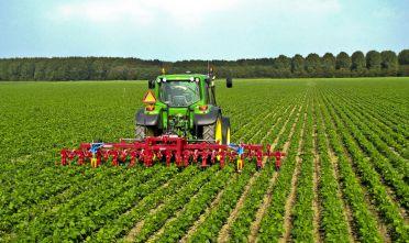 agricoltura-1-372x221 Agricoltura sociale